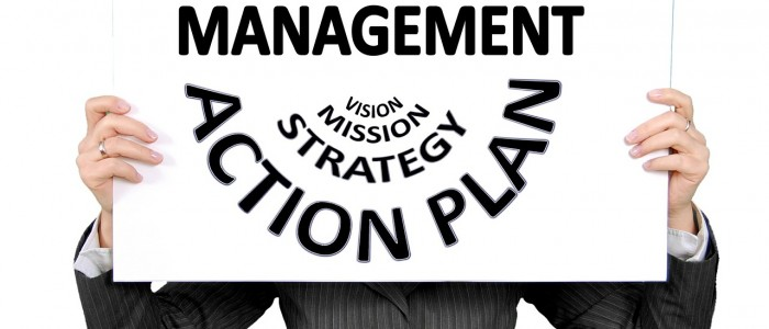 Project management from vision to mission, strategy and action plan